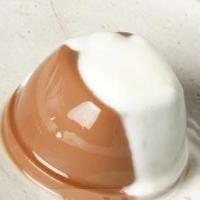Resep Makanan Bayi Puding Cokelat Saus Vanila