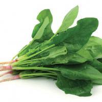 Daftar Sayur yang Bisa Menambah ASI