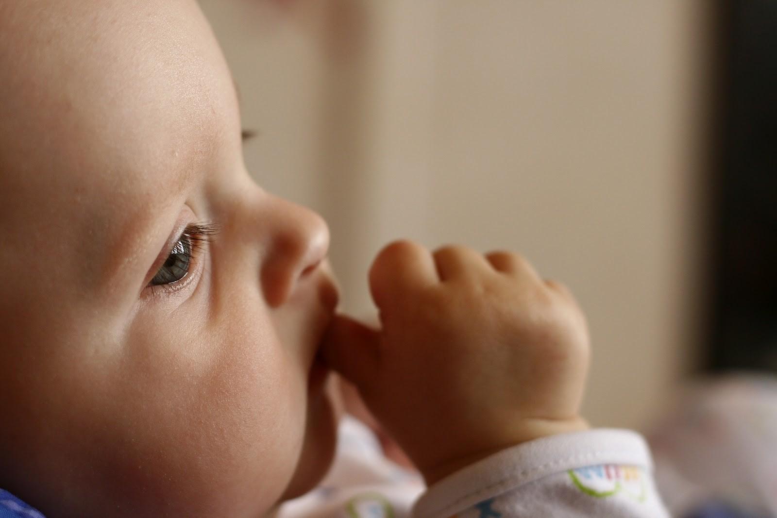 Moms, Jangan Hambat Fase Oral si Kecil!