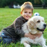 Hewan-hewan Peliharaan untuk Pelajaran Nilai Kehidupan Si Kecil