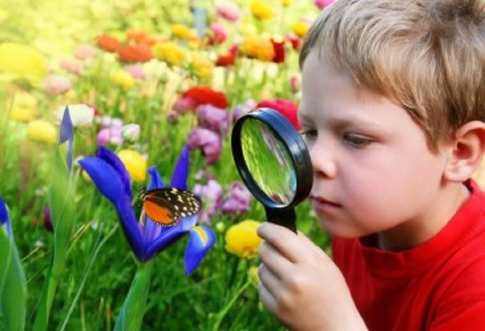 Apa sih Keunggulan Sekolah Alam?