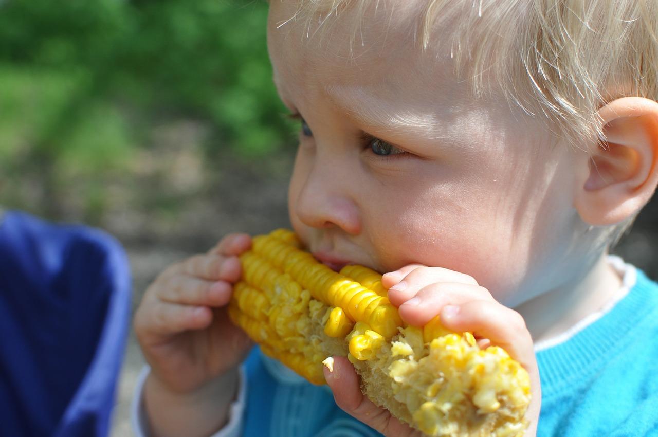 Perlukah Makanan Si Kecil Bayi Diberi Tambahan Garam?
