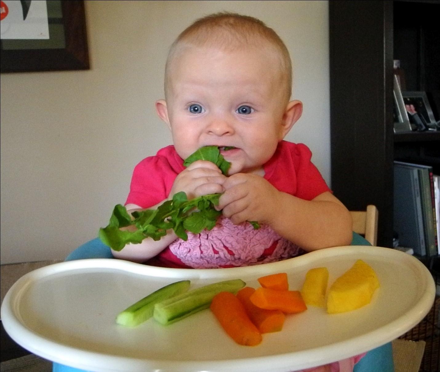 Kenali Tren Baby-Led Weaning Yuk Moms!