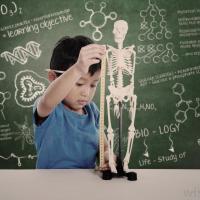 EQ vs IQ untuk Si Kecil. Mana yang Lebih Penting, Dads?