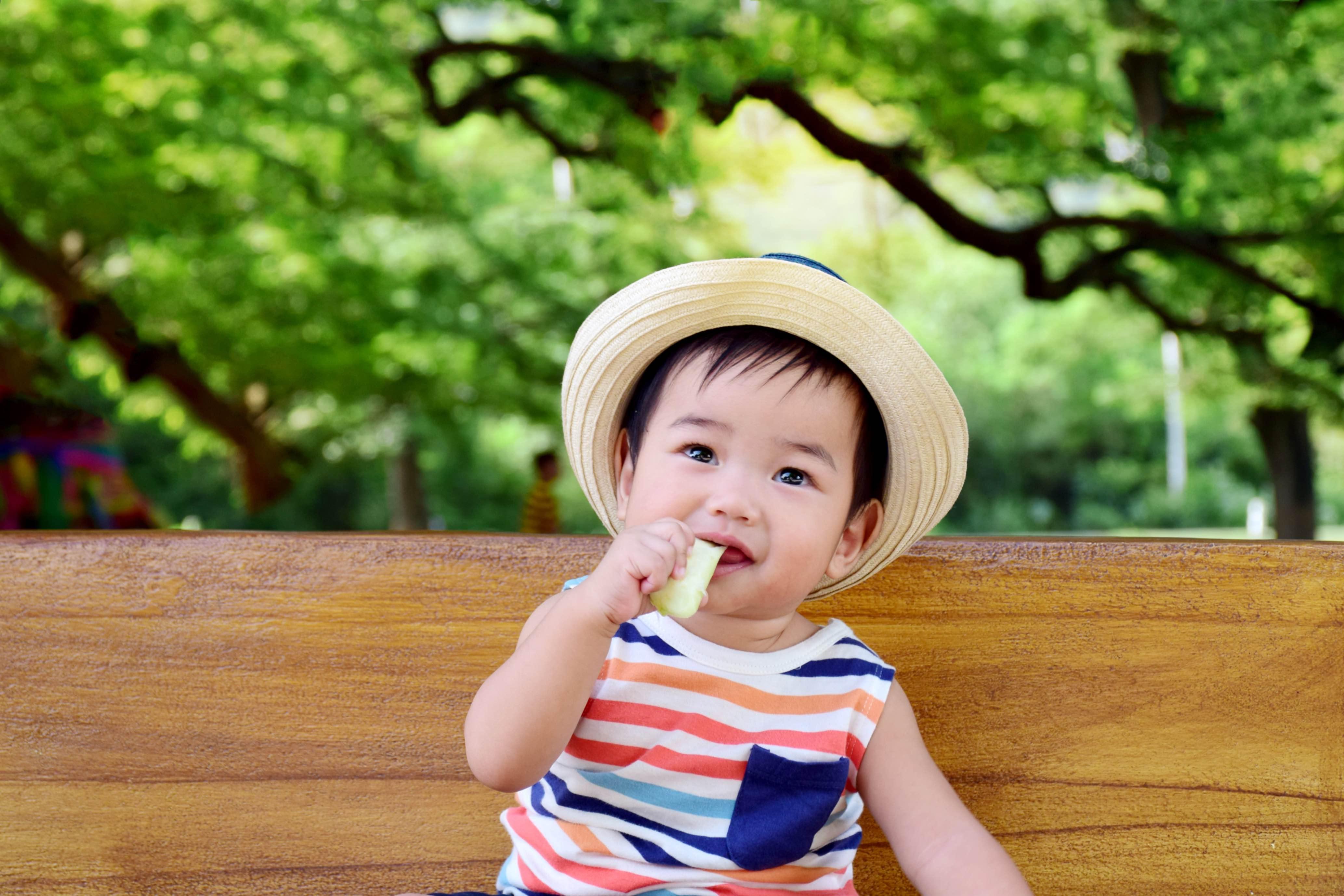 Menu Makanan Bayi 1 Tahun yang Sehat dan Disukai