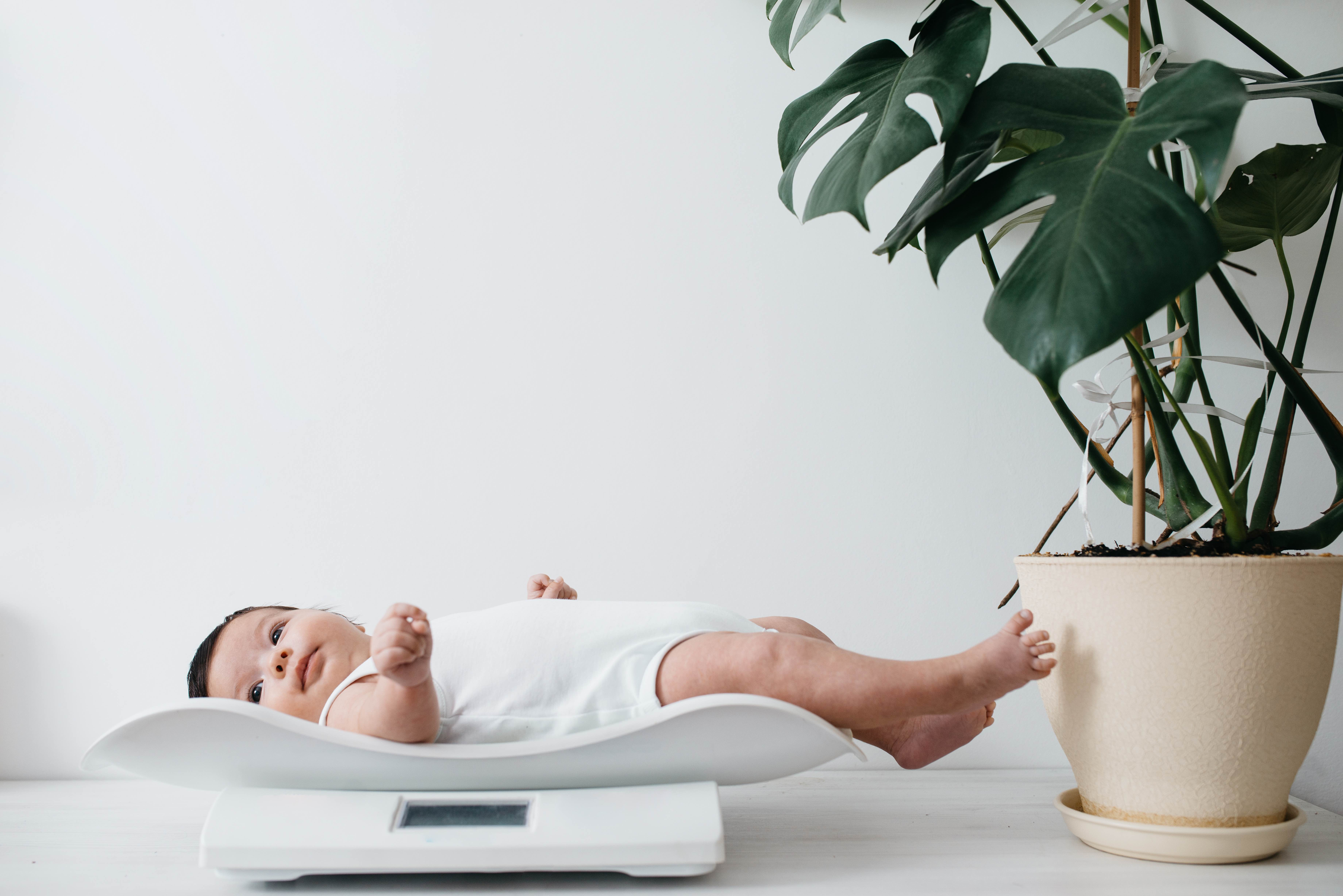 Simak, 7 Faktor yang Memengaruhi Berat Badan Bayi